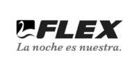 logo_flex_web_creaas png